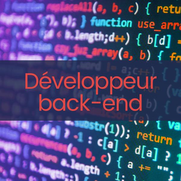 Développeur back-end dotNET H/F